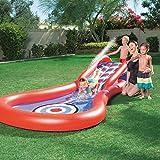 H2OGO! Splash & Play Cannon Ball Water Slide