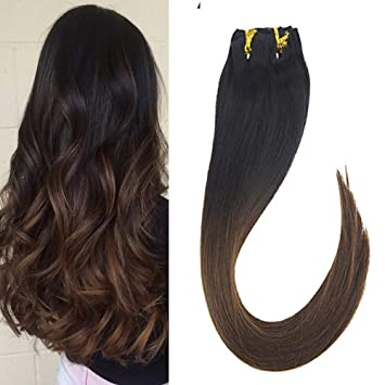Extensions ombre clip in