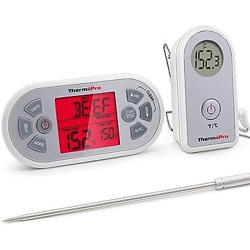 mini Thermopro TP21
