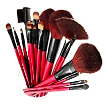 Professional 13-Piece Cosmetic Brush Set
