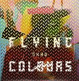 Flying Colours (2LP Vinyl)