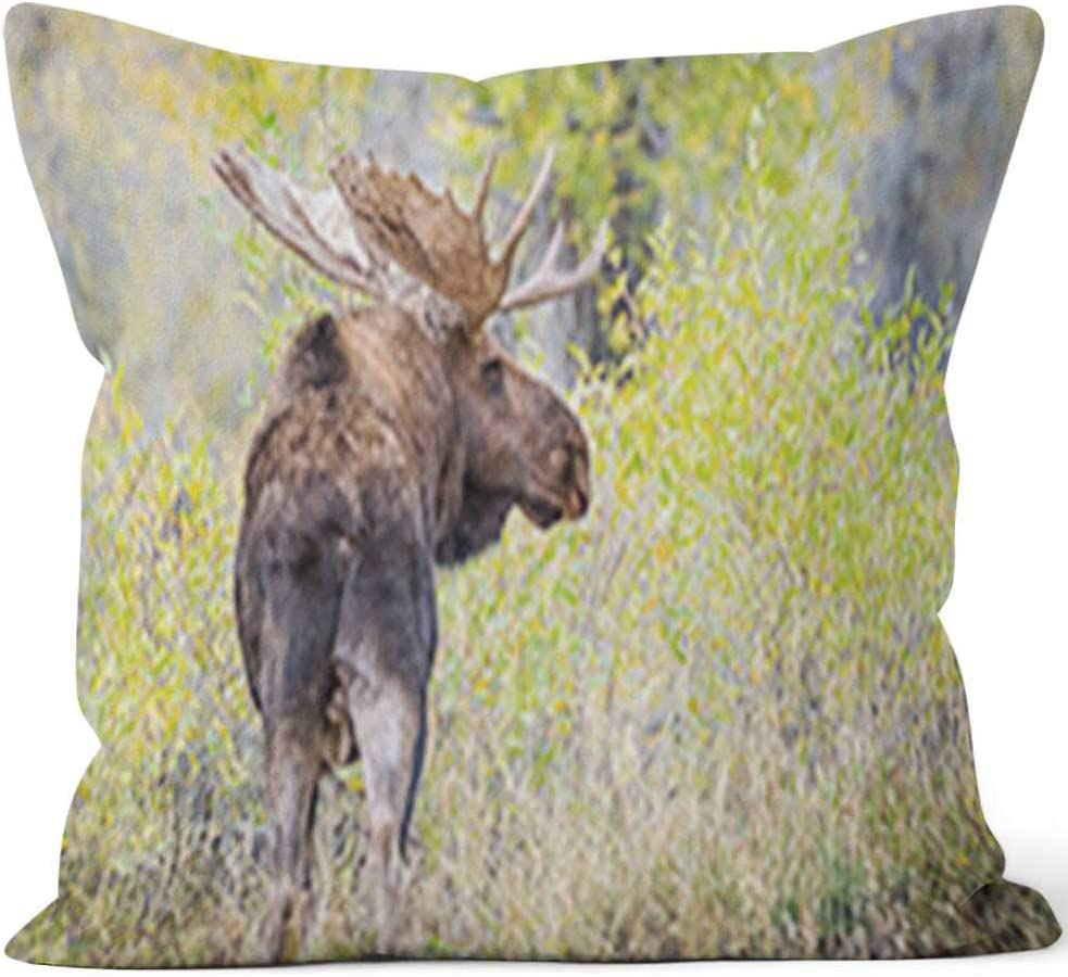 """Nine City Large Bull Moose in Yellow Forest Home Decor Throw Pillow Cover Cotton Linen Cushion,HD Printing for Couch Sofa Bedroom Livingroom Kitchen Car,36"""" W by 36"""" L"""