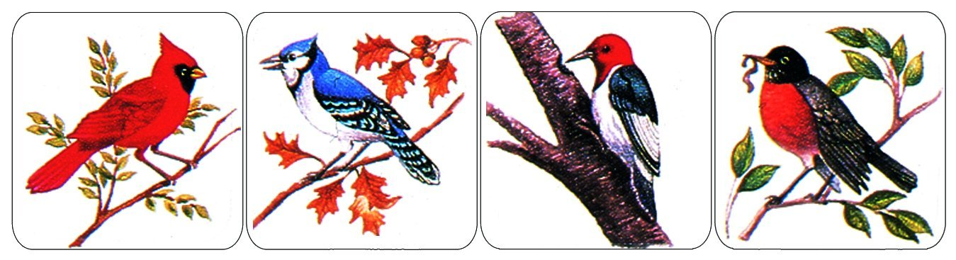 Paper Magic 655330 Eureka Birds Stickers, 120 Per Pack Inc. Paper Magic Group