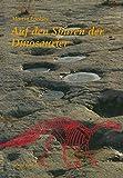 Auf Den Spuren der Dinosaurier : Dinosaurierfährten -- eine Expedition in Die Vergangenheit, LOCKLEY, 3034862067