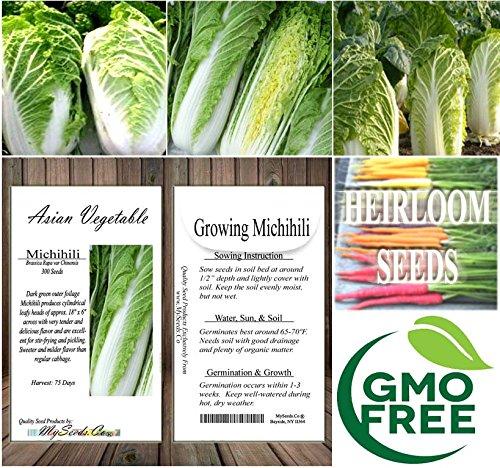 Asian grow seed veg apologise, but