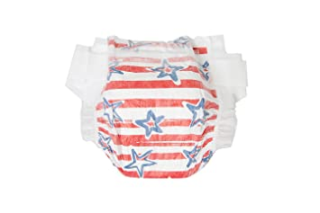 Honest Company Diapers Stars and Stripes (4)