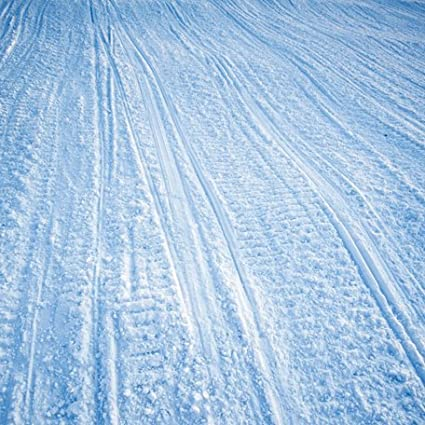Amazon com: Snowmobile Tracks 12