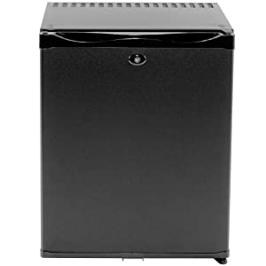 Smad Mini Fridge with Lock Compact Refrigerator for Dorm Office Bedroom No Noise,12V/110V,1.0 Cubic Feet, Black