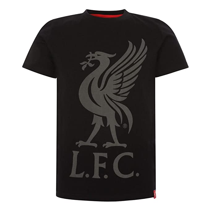 Liverpool FC Grey Womens Football Marl Zip Through Hoodies SS19 LFC Official