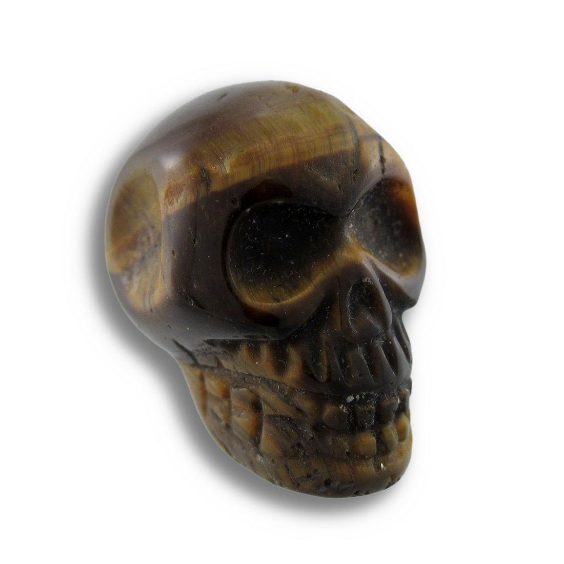 things2die4アクリルLoose宝石美しいCarved Tiger Eye Gemstone Skull 25 mm 1インチブラウンモデル# vil33 a   B00GCAOO4U