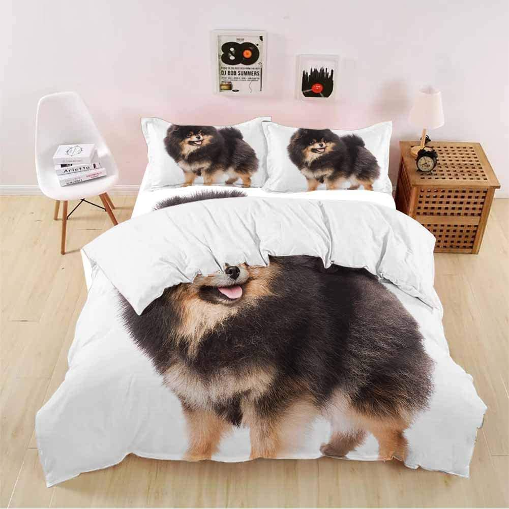 carmaxsHome 4 Piece Hotel Luxury Premium Bed Sheets Set Group of Pomeranian Spitz Dogs on White Background 4 Piece Set X-Long Twin