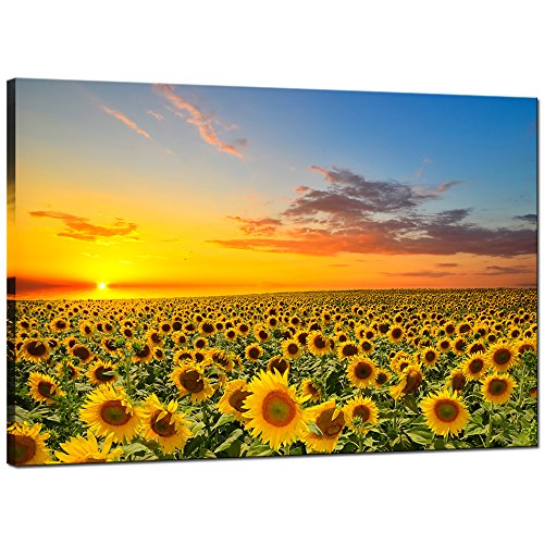 Sunflower Picture (Sea Charm Sunflower Canvas Wall Art Warm Color Sunrise in The Field Landscape Painting Picture Print Art for Living Room Decor,Framed and Ready to Hang)