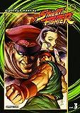 Street Fighter, Volume 3: Fighter's Destiny