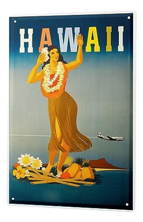 Blechschild Welt Reise Hawaii