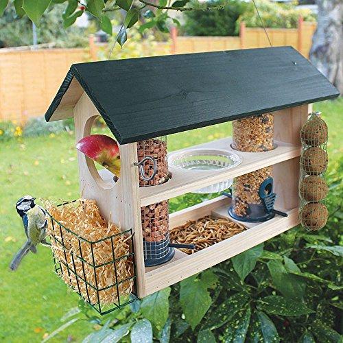 Bird Feeding Variety Station Coopers Of Stortford