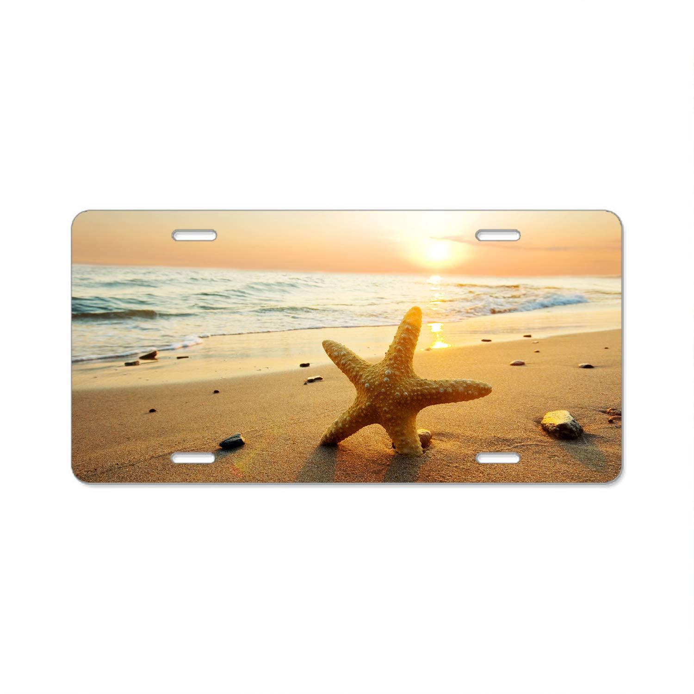 CUSTOM PERSONALIZED VANITY LICENSE PLATE BEACH STARFISH AND SEA SHELLS AUTO TAG
