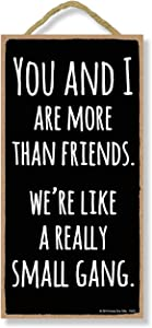 Honey Dew Gifts Friend Sign, You and I are Like Small Gang 5 inch by 10 inch Hanging Sign, Wall Art, Decorative Funny Home Decor