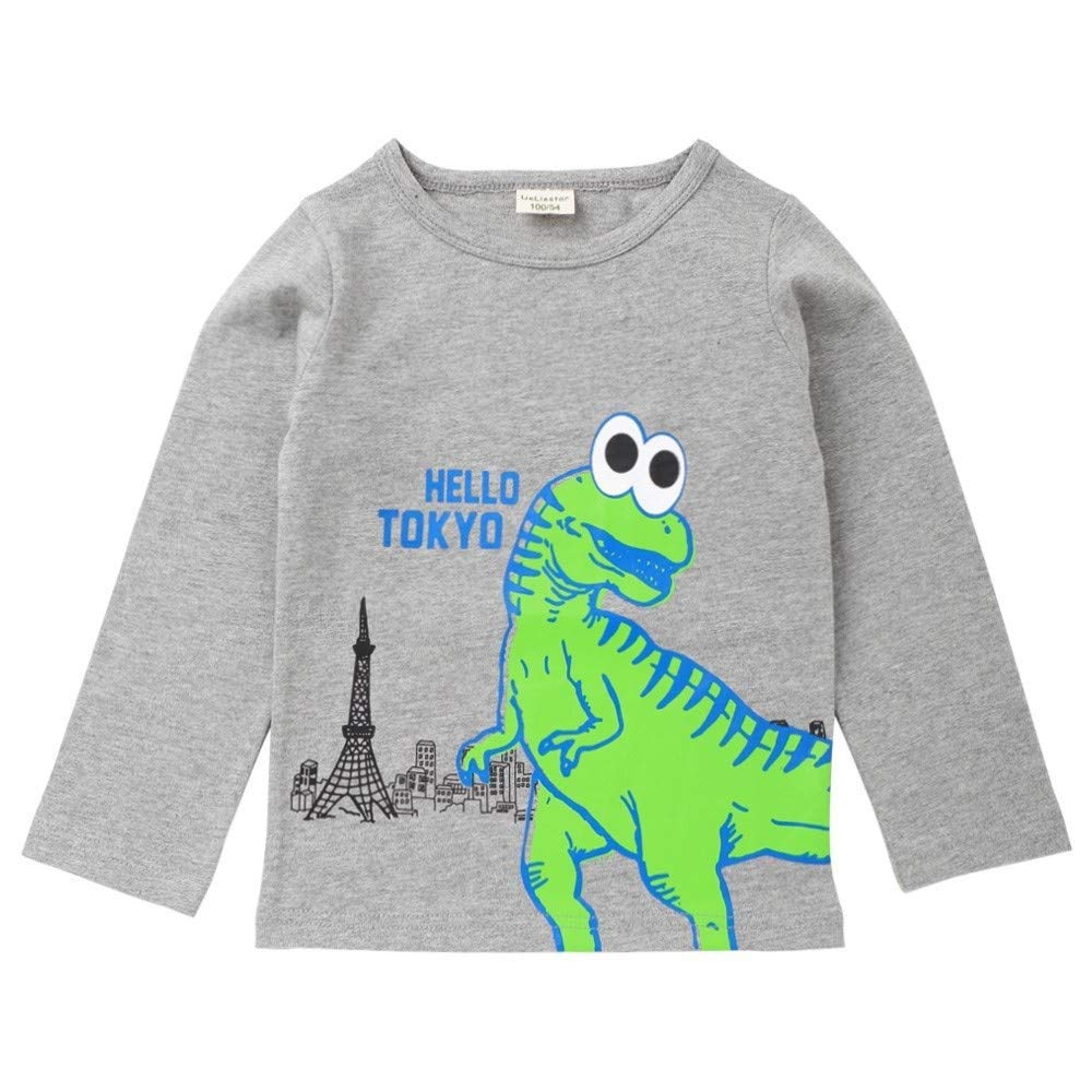 Color : Gray, Size : 110 MAOMAHREWW Kids Baby Boys Letter Dinosaur Print Tee Shirt Crewneck Pullover Top