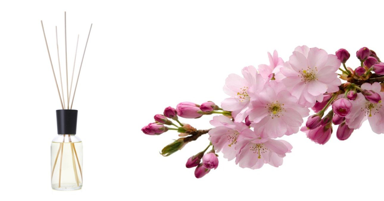 NAVI Serum Facial Refinador de Poros / Suero con Aceite de Ricino & Vitamina A / Muestra, 5 ml: Amazon.es: Belleza