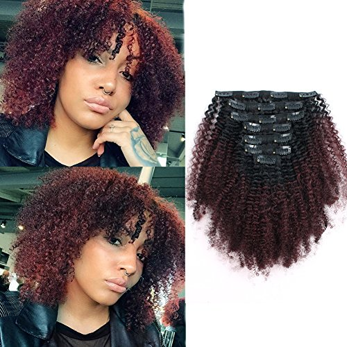 Sassina Ombre Afro Curly Clip In Human Hair Extensions Double Wefts Remi Hair For Black Women Natural Black Fading into Cherry Wine 120 Grams-Set With 7 Pieces 17 Clips AC TN99J 12 Inch