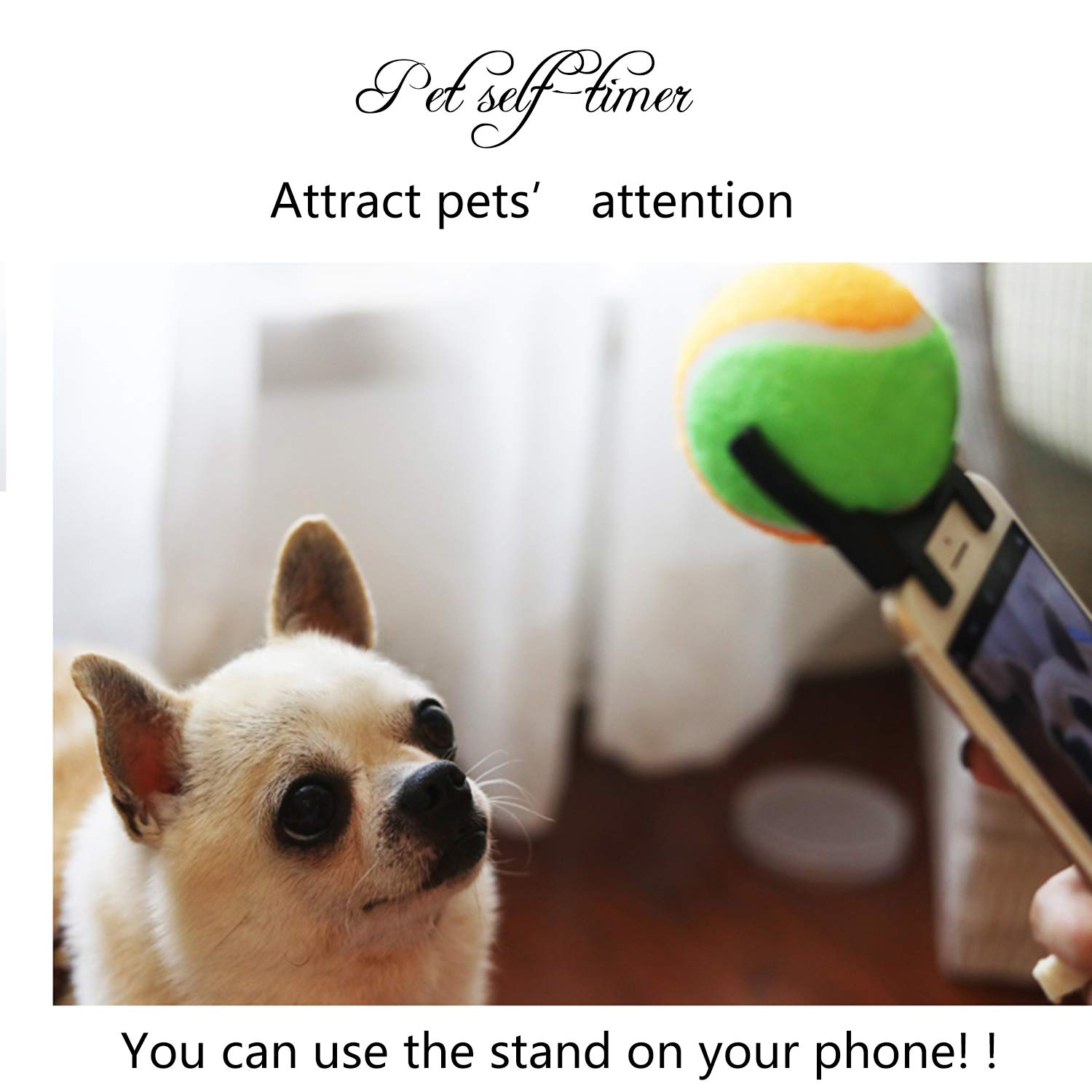Ansblue Portable Pets Selfie Stick Ball,Smartphone Camera Accessory for Pet Dog Train Photos Ball , Can Make A Sound Attachment Dog Cat Take Photos Training Toy 2.5 Inchs