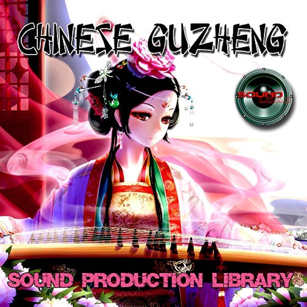 [해외] CHINESE GUZHENG - UNIQUE PERFECT WAVE/NKI MULTI-LAYER SAMPLES LIBRARY ON DVD OR FOR DOWNLOAD