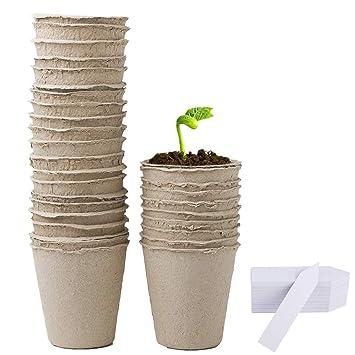 Augola Macetas biodegradables de fibra para semillas con 100 etiquetas de plástico para plantas: Amazon.es: Jardín