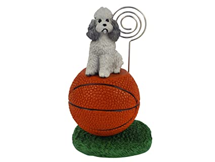 Amazon com: Conversation Concepts Poodle Sport Cut Gray Basketball