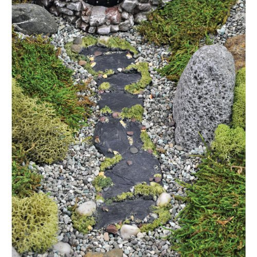 georgetown-home-garden-fairy-garden-slate-moss-path