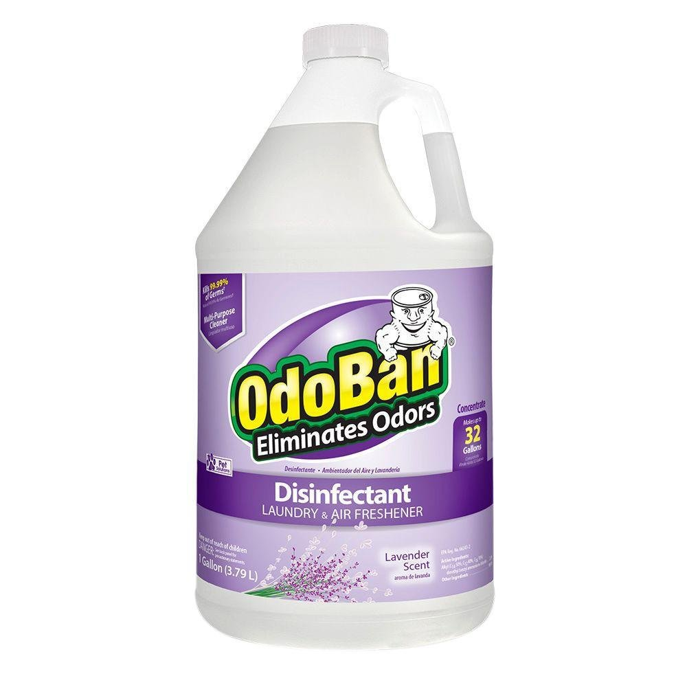 OdoBan Odor Eliminator and Disinfectant Concentrate, Lavender (2 Gal) by OdoBan (Image #4)