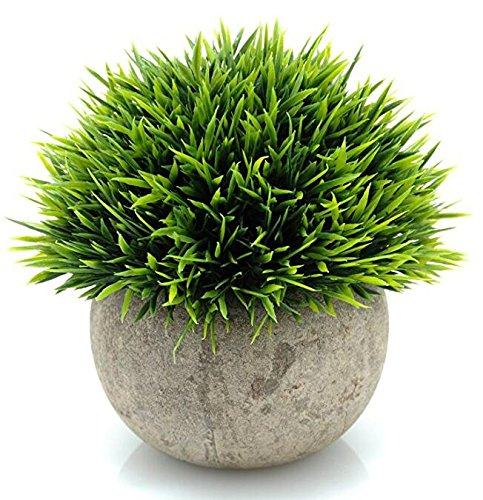 Leyaron Mini Plastic Fake Green Grass Small Artificial Potted Plants for Home Decor and Office - Premium Quality Material: These small artificial plants are made from advanced PE materials, so that these fake potted plants are more lifelike than others in the market. Small, but Lifelike: Diameter of product: 4.7'', Height: 4.7''. (From top tip of the plant to the bottom of the pot). Our artificial potted plants are about the size of your hand and really accent any area well. These mini plastic plants look real enough and add a touch of nature to your space. Add Color: Our plastic plants are small and cute. The vibrant color adds a great pop of greenery and will brighten up the place no matter where you put it. It is a perfect choice for people who are not good at cultivating live plants. - living-room-decor, living-room, home-decor - 61Ogogy2YhL -