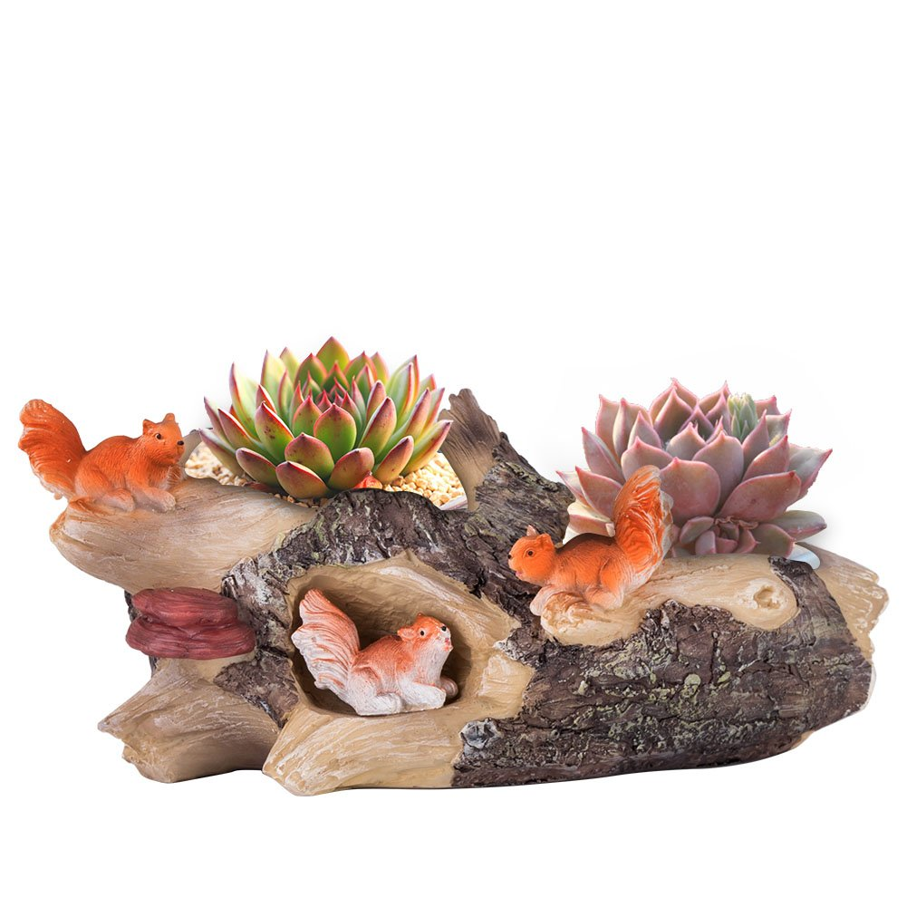 Vencer Succulent Planter and Air Plant Pot,Office Desktop Potted Stand,Home & Office Decor Accent,New Design,Squirrels,VF-076