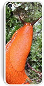 Graphics and More Large Orange Slug Snail Mollusk Protective Skin Sticker Case for Apple iPhone 5C - Set of 2 - Non-Retail Packaging - Opaque