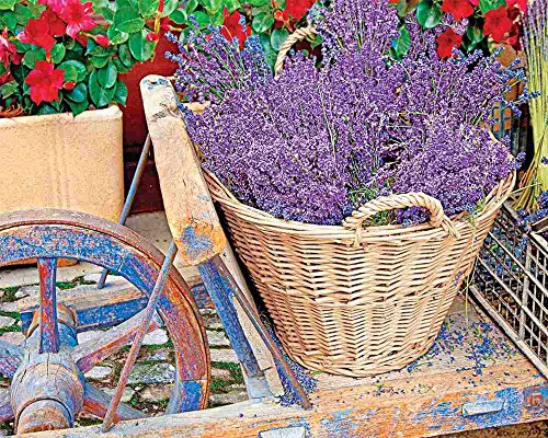 Springbok Puzzles - Basket of Lavendar - 1000 Piece Jigsaw Puzzle - Large 24 Inches by 30 Inches Puzzle - Made in USA - Unique Cut Interlocking Pieces