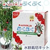 協和ハイポニカ ホームハイポニカプクプク 水耕栽培キット MJA068