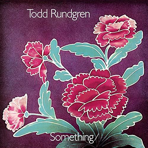 Something / Anything? : Todd Rundgren: Amazon.es: Música