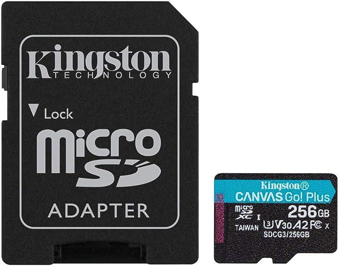 Evo Select microSD Carte m/émoire 256 Go