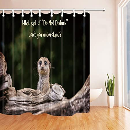 Rrfwq Safari Wil Animals Suricatta Shower Curtains For Bathroom