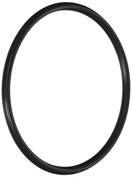 Amazon Com Pentair R172009 Cap O Ring Replacement Pool And Spa