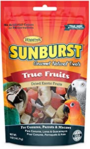 Higgins Sunburst True Fruits Gourmet Treats Conures, Parrots & Macaws