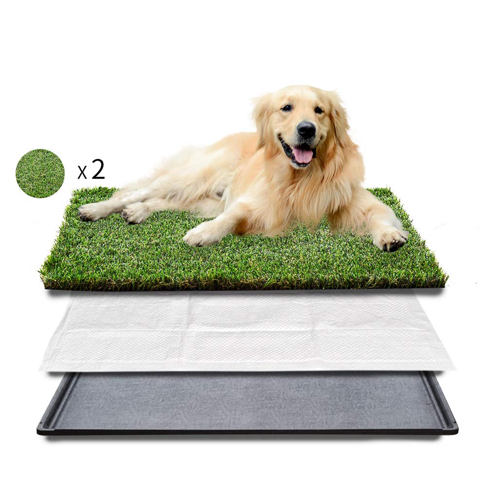HQ4us Large Dog Litter Box (34''×23''), 2×Dog Artificial Potty Grass for Replacement, Realistic, Bite Resistance Turf, Less Stink, Indoor Outdoor pet Potty Trainer by HQ4us