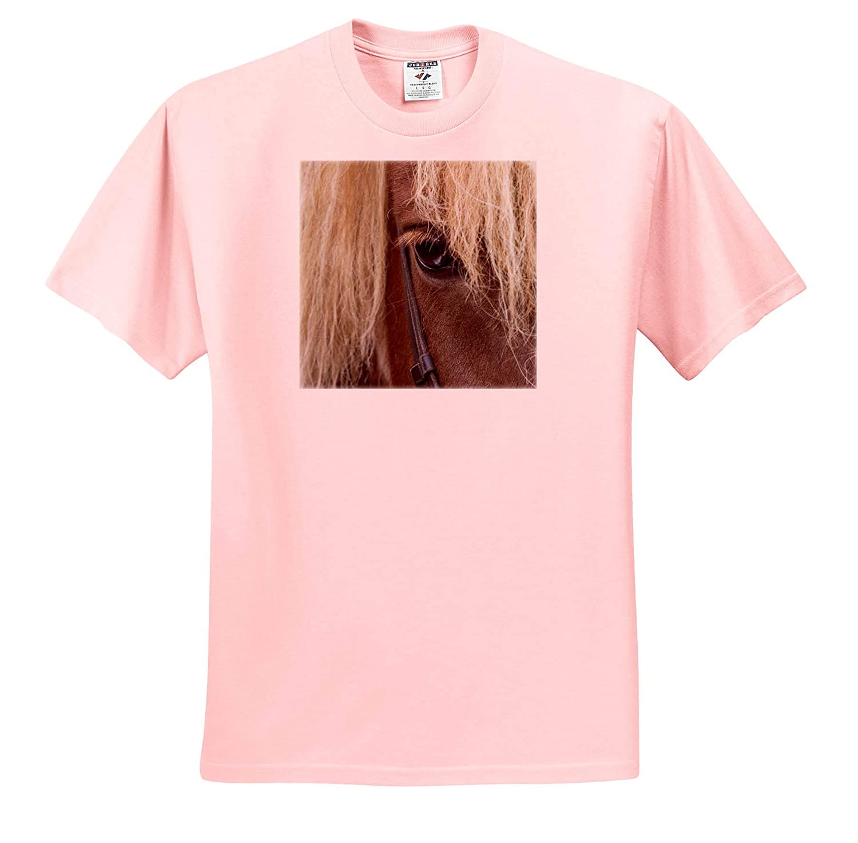- Adult T-Shirt XL Horses 3dRose Danita Delimont Detail of Sorrel Horse with Flax Mane ts/_313644