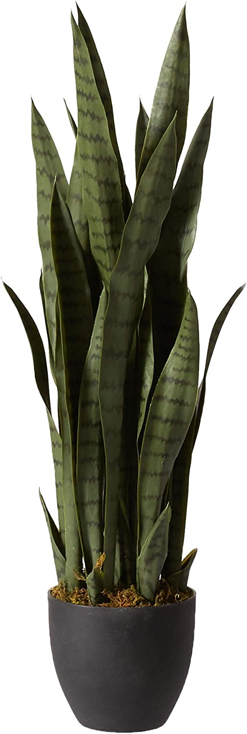 Sansevieria with Black Planter by Nearly Natural from Amazon | Designer Finds: Bringing Natural Elements Into Your Home | Jade and Sage Interior Design | eDesign Tribe Blogs