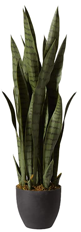 img buy Nearly Natural 4855 Sansevieria Plant with Black Planter, Green