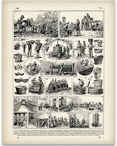 Vintage French Wine Making Illustration - 11x14 Unframed Art Print - Great Gift for Wine Lovers, Grottos, Wine Cellars and Home Bar Decor ()