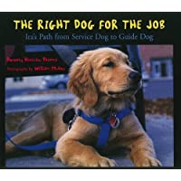 Storytown: Challenge Trade Book Story 2008 Grade 3 Right Dog/Job