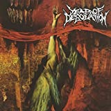 Year of Desolation by YEAR OF DESOLATION (2007-01-23)