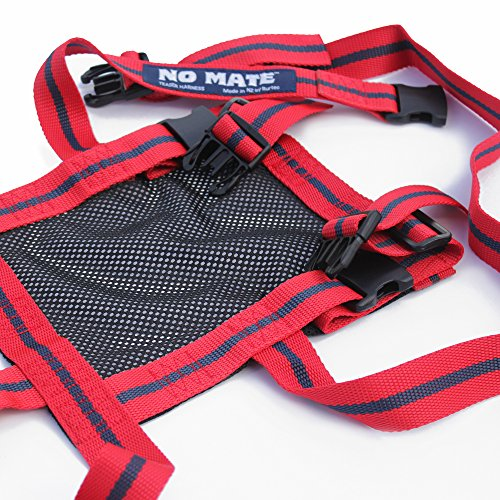 NO MATE Teaser Harness by Rurtec, Sheep & Goat Breeding Tool, Made in New Zealand - For Use with a MATINGMARK Harness