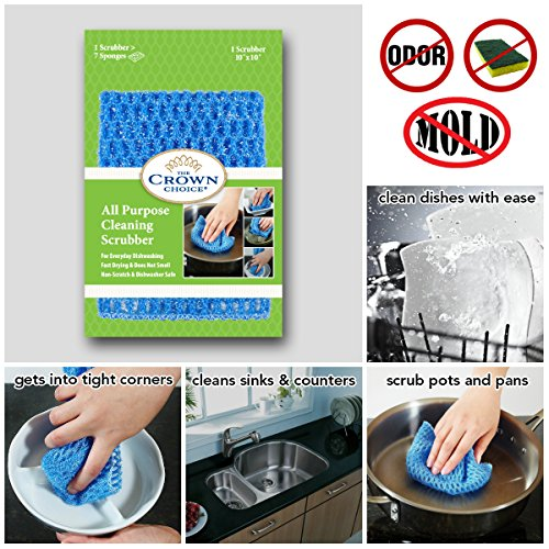 2-in-1 Dishwashing Set | NO ODOR Scrubber + 100% Natural Dish Soap