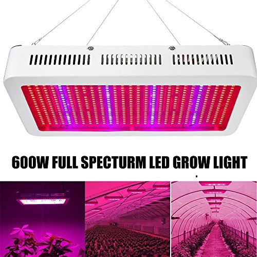 Grow Light Led Vs Hps